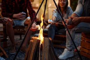 campfires and rvngo