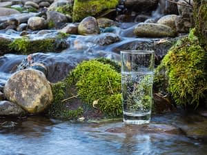 Fresh Water & Your RV RVnGO